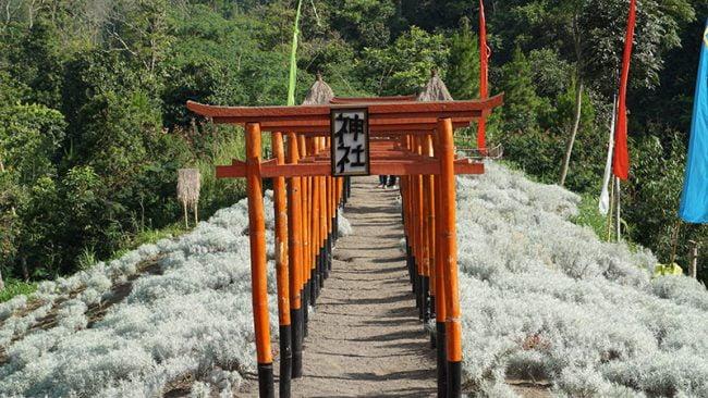 Taman Jinja