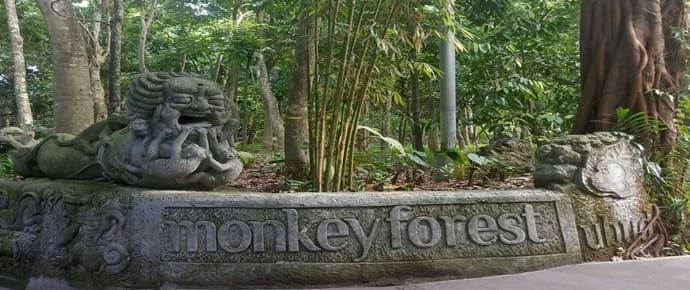 Berwisata ke Monkey forest ubud bali